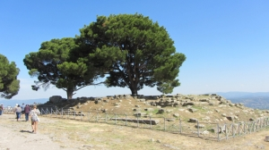 Great Altar of the Temple of Zeus, Pergamon