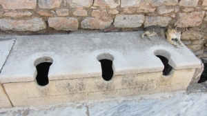 Making the most of the public latrines